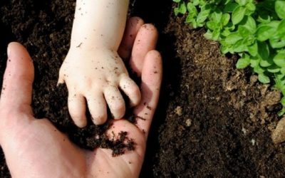 Join the Agroecology and Soil Health discussion!