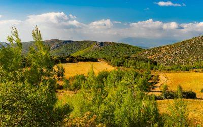 Forum Synergies' European Rural Sustainability Gathering