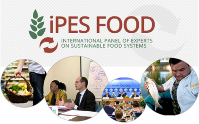 """Exclusive: Olivier De Schutter on why """"a Common Food Policy is urgently needed"""""""