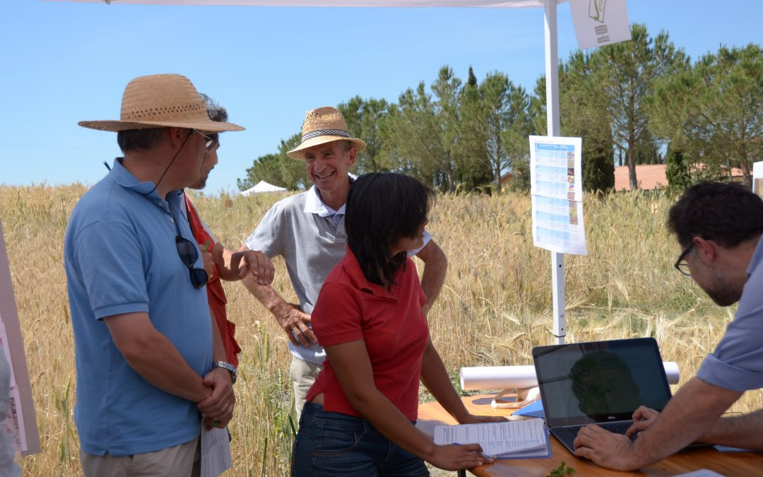 "CAPSELLA's soil pilot at  ""Let's cultivate biodiversity 2017"""