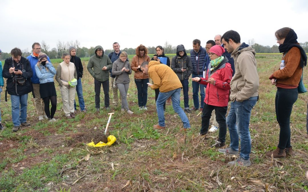 CAPSELLA at Agroecology Europe in Lyon